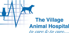 Village Veterinary Group