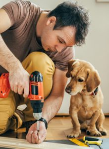 Dog with builder
